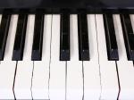 電子ピアノやギターなどの楽器