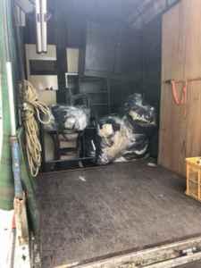 福岡不用品回収 軽トラ、引越しゴミ回収、部屋の片付け、ゴミ屋敷、福岡単身引越し