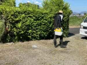 福岡草刈り、大分草刈り、熊本草刈り、空家片付け、実家片付け、庭片付け、引越し不用品、遺品整理、生前整理、リサイクル、買取、
