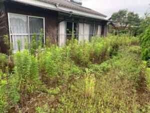 草刈り、除草剤散布、空家片付け、実家片付け、遺品整理、生前整理、庭片付け、ゴミ屋敷、ハウスクリーニング、リサイクル、買取